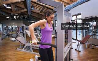 Как накачаться на брусьях, виды упражнений, программа тренировок и правильная техника отжиманий