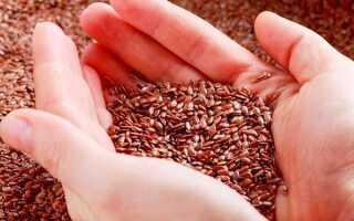 Чем полезны семена льна для желающих похудеть