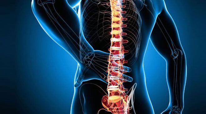 Развитию и обострению остеохондроза позвоночника способствуют статические и динамические перегрузки, а также вибрация.