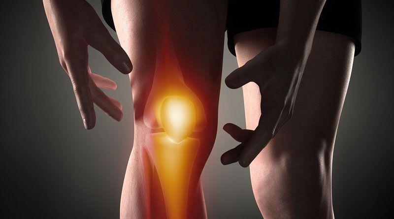 Анатомическое строение коленного сустава включает все ключевые элементы опорно-двигательного аппарата.