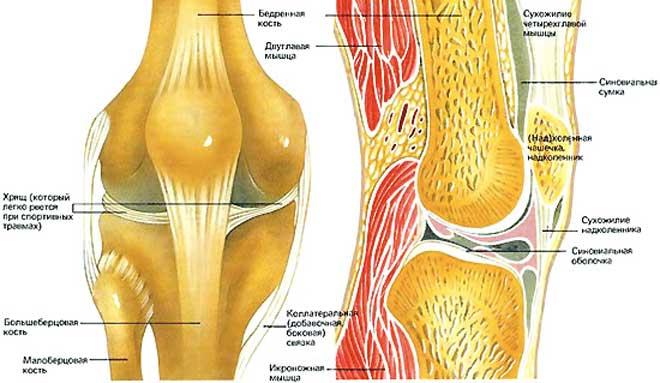 Боль возникает из-за трения так называемого илиотибиального тракта о латеральный мыщелок бедренной кости.