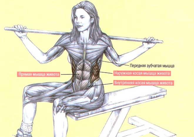 Достаточная гибкость тканей вокруг позвоночника и таза обеспечивает вам легкость движений с участием спины, предотвращает негативное воздействие на суставы и снижает вероятность получения травм.