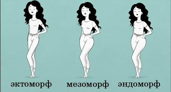 Полноватые от природы эндоморфы легко увеличивают вес тела (чаще всего, за счет жира), тогда как спортивные мезоморфы обладают генетической предрасположенностью к набору мышечной массы.
