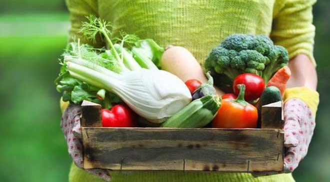 Если вы давно хотите похудеть, но не знаете, как это сделать и ваши старания безрезультатны, следует попробовать овощную диету.