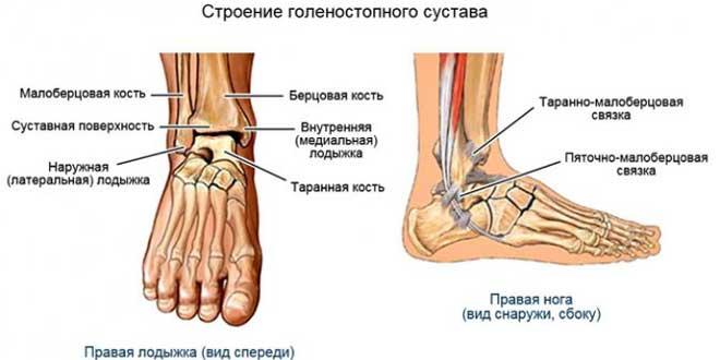 Реабилитация после перелома лодыжки — процесс, требующий терпения.